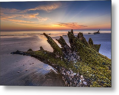Driftwood On The Beach Metal Print by Debra and Dave Vanderlaan