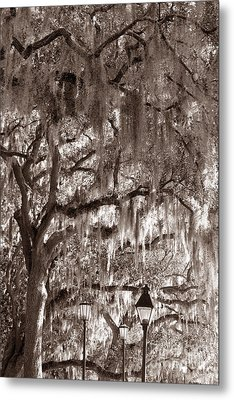 Dripping Feathers Metal Print