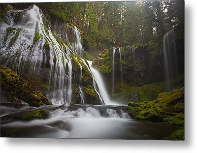 Dripping Wet Metal Print by Darren  White