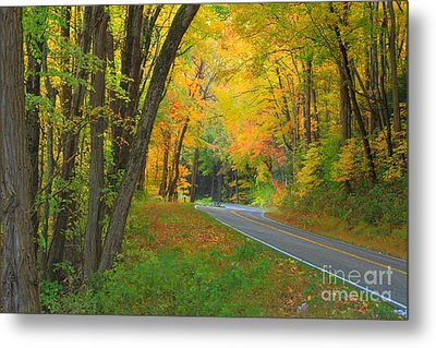 Driving Into Fall Metal Print by Geraldine DeBoer