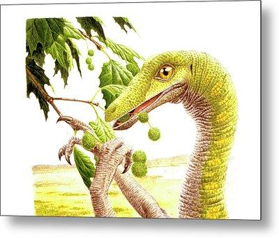 Dromiceiomimus Dinosaur Metal Print by Deagostini/uig
