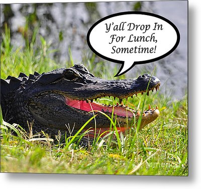 Drop In For Lunch Greeting Card Metal Print by Al Powell Photography USA