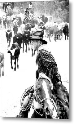 Drover At Work Metal Print