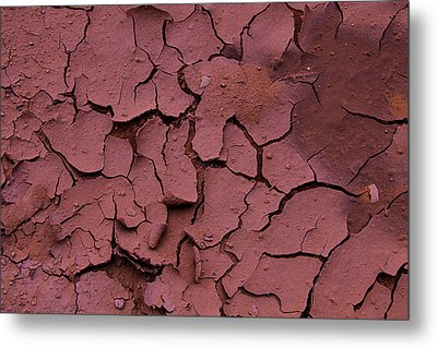 Dry Cracked Earth Metal Print by Garry Gay