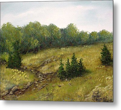 Metal Print featuring the mixed media Dry Creek by Kenny Henson