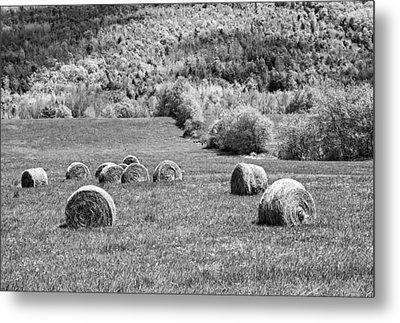 Dry Hay Bales In Maine Farm Field Metal Print by Keith Webber Jr