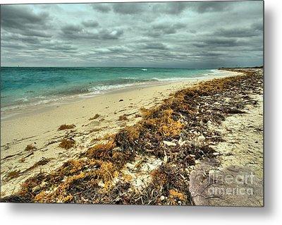Dry Tortugas Beach Metal Print by Adam Jewell