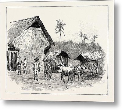 Drying Sheds For Tobacco, Sumatra, Indonesia Metal Print by Indonesian School