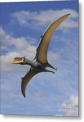 Dsungaripterus Weii, A Pterosaur That Metal Print by Sergey Krasovskiy
