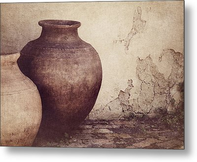 Duality Metal Print by Amy Weiss