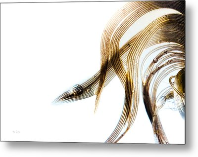 Duck Feather And Water Drops Metal Print