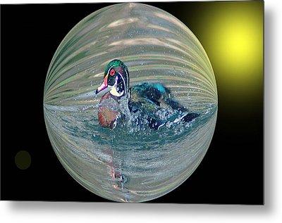 Duck In A Bubble  Metal Print