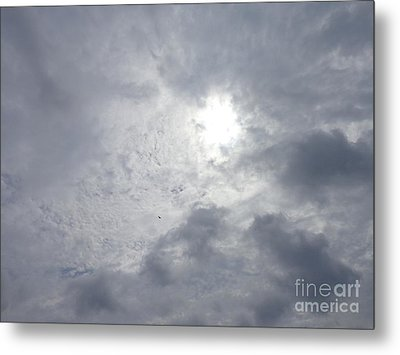 Duck In Beautiful Sky Metal Print by Christina Verdgeline