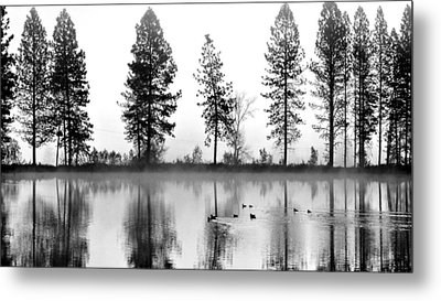 Metal Print featuring the photograph Duck Weather by Julia Hassett