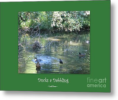Ducks A Dabbling Metal Print by Linda Prewer