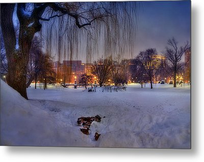Ducks In Boston Public Garden In The Snow Metal Print by Joann Vitali