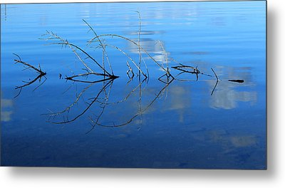 Duet Of The Branch And The Lake Metal Print