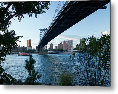 Metal Print featuring the photograph Dumbo One by Jose Oquendo