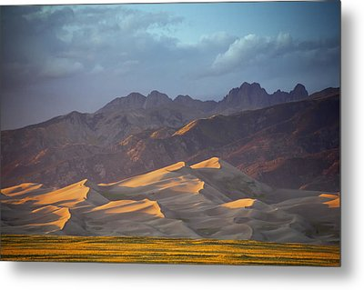 Dune Delight Metal Print by Morris  McClung