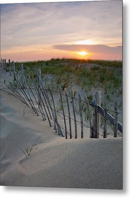 Dunes Of Cape Cod Metal Print by Patrick Downey