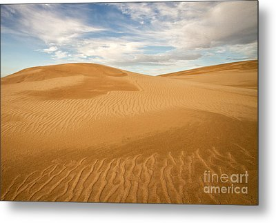 Dunescape Metal Print by Alice Cahill