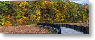 Durand Eastman Park Metal Print by Mark Papke