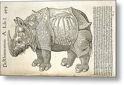 Durer's Rhinoceros, 16th Century Metal Print