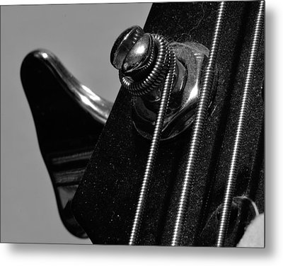 Dusty Bass Metal Print