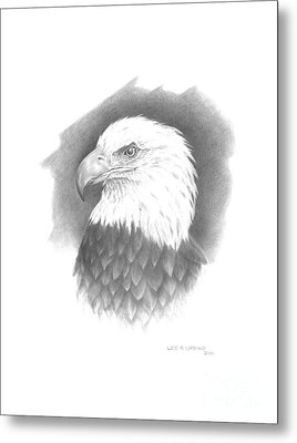 Eagle-1 Metal Print by Lee Updike