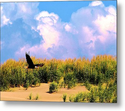 Eagle At The Beach Metal Print