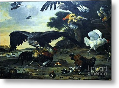 Eagle Attacking Metal Print by Pg Reproductions