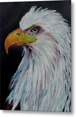Eagle Eye Metal Print by Jeanne Fischer