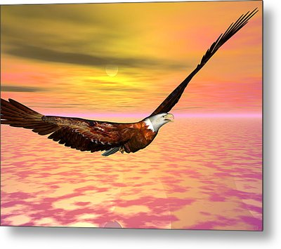 Eagle Flight Metal Print