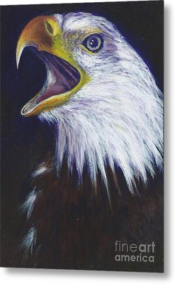 Bald Eagle - Francis -audubon Metal Print