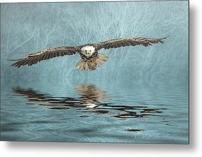 Metal Print featuring the photograph Eagle On Misty Lake by Brian Tarr