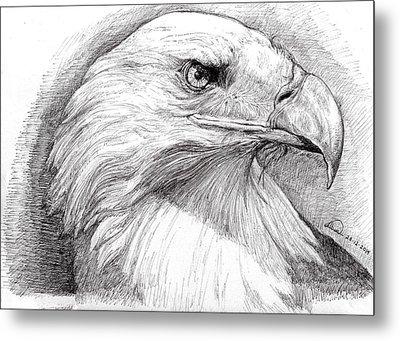Eagle Portrait Metal Print by Alban Dizdari