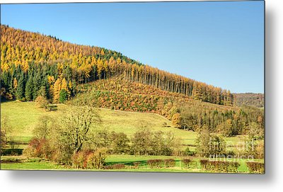 Early Autumn Metal Print by David Birchall