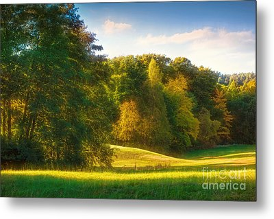 Early Autumn Glow Metal Print