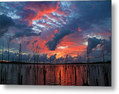 Early Dawns Light Metal Print