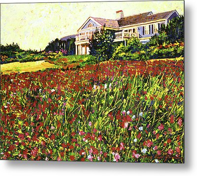 Early Evening At Cape Cod Metal Print by David Lloyd Glover