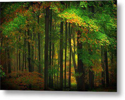 Early Fall 4 Metal Print by Emmanuel Panagiotakis