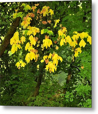 Early Fall Color 26311 Pknife Metal Print by Jerry Sodorff