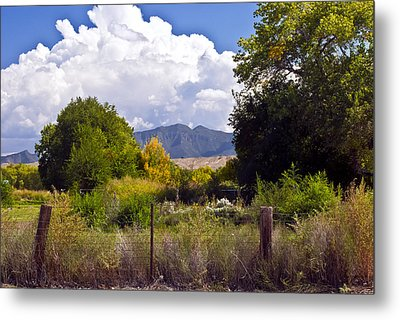 Early Fall Metal Print by Don Durante Jr