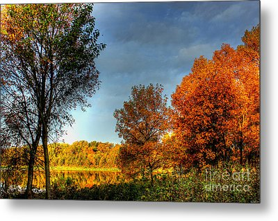 Early Light Metal Print by Thomas Danilovich