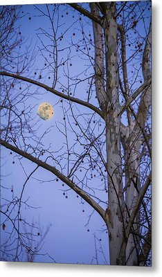 Metal Print featuring the photograph Early Moon by Micah Goff