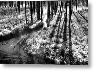 Early Morning Chill Metal Print by Mark Kiver