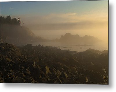 Early Morning Fog At Quoddy Metal Print by Marty Saccone
