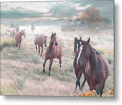 Early Morning Fog Metal Print by Bill Stephens