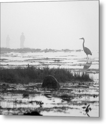 Early Morning Fog Metal Print by Mike McGlothlen