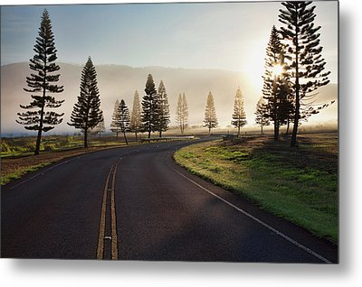 Early Morning Fog On Manele Road Metal Print by Jenna Szerlag